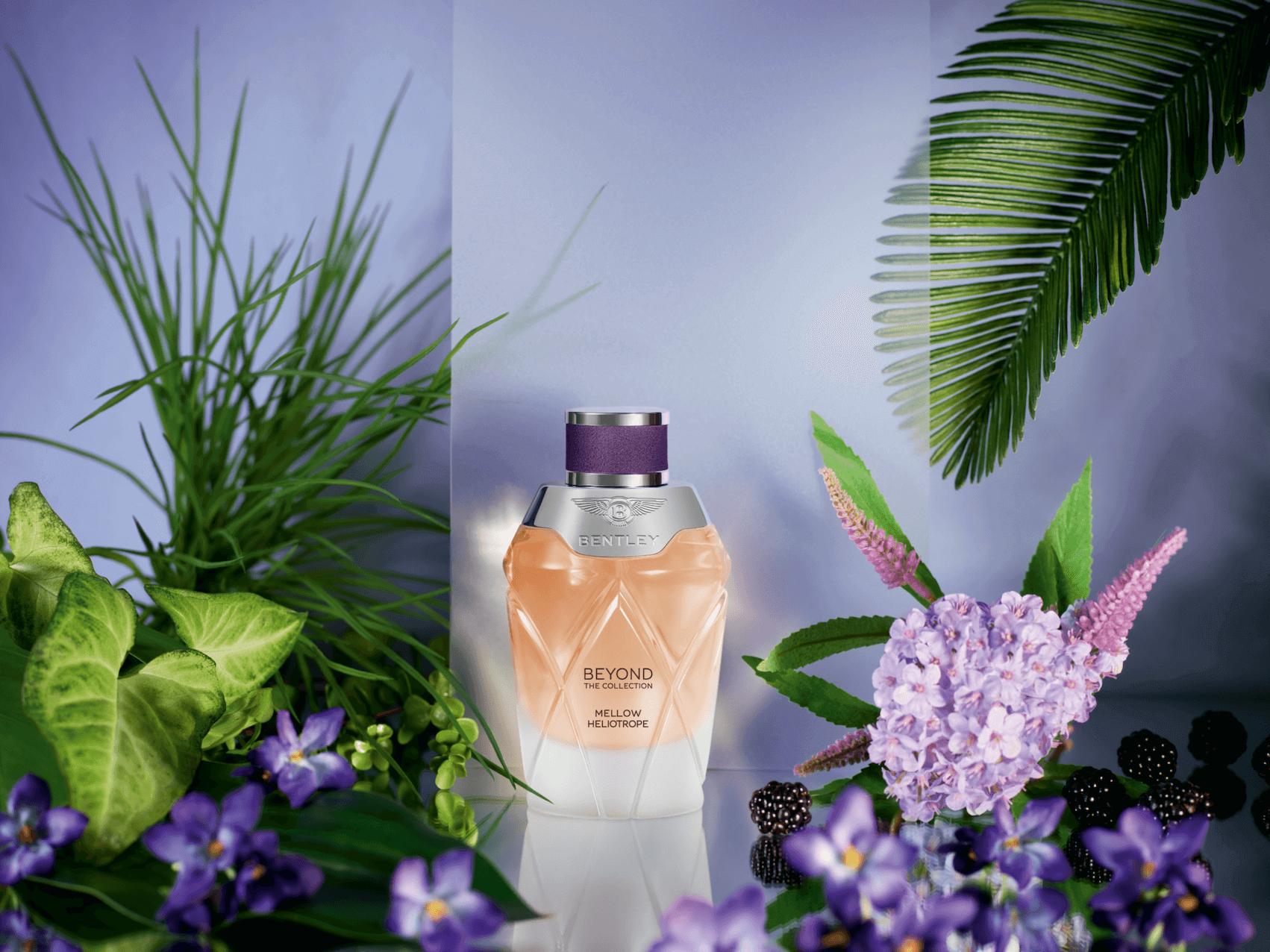 Bentley Fragrances parfüm hakkında bilgi